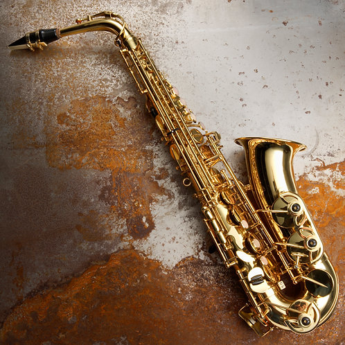 Musicians, Soloists, Accompanists