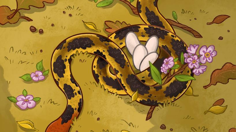 Mama Bull Snake