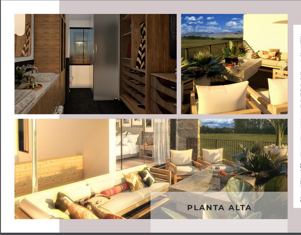 Look & Feel Planta Alta