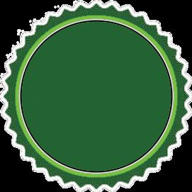 Graystone Realty Seal Green Reg.png