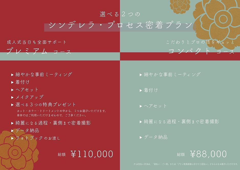 成人式前撮り・後撮り_完成_page-0003.jpg
