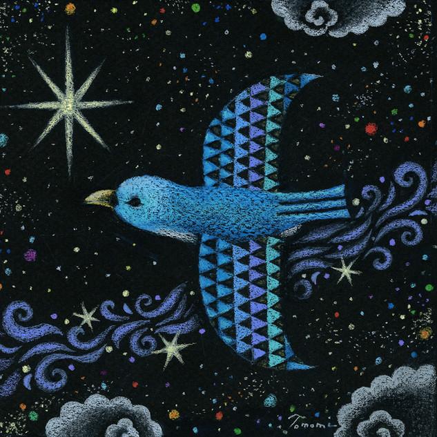宇宙を飛ぶ青い鳥