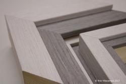 Contemporary designer's frames