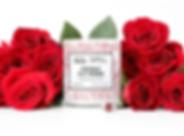 freshly-cut-rose_1200x_c5cc89fe-b0f2-47a