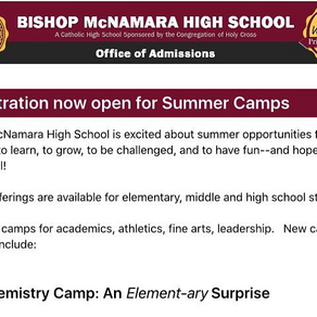 The Chemist: My Summer at Camp