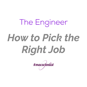 The Engineer: How to Pick the Right Job