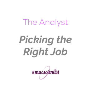 The Analyst: Picking the Right Job