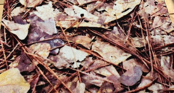 Camo/Leaf Carpet