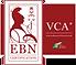 VCA 1ster website logo-02.png