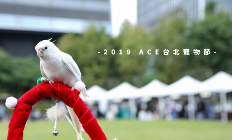 2019 ACE台北寵物節