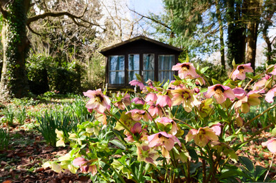 Pontcanna Municipal Chalet Gardens 3.jpg