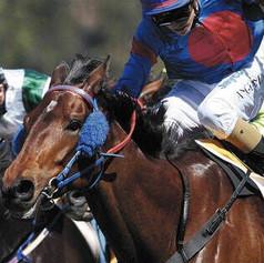 raceday_1_20120609_1387570296-4-600-450-