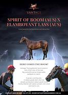 Spirit of Boom x Flamboyant Lass.png