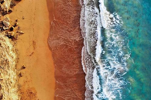 COOKSIES CLASSIC | Mona Vale Beach