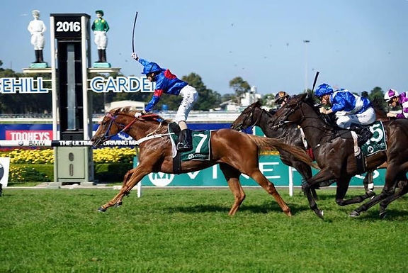 Vinery Stud Stakes: Kathy O'Hara repays Nick Olive's faith with Group 1 win on Single Gaze