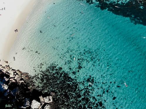 SHELLY SHORES | Shelly Beach