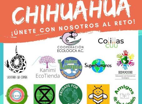 Muestran su músculo, colectivos ambientalistas