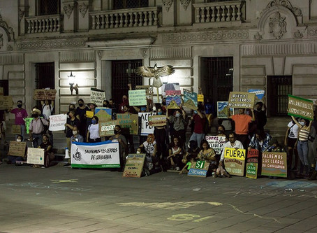 """""""Acción Ambiental"""", suma de colectivos a nivel estatal"""