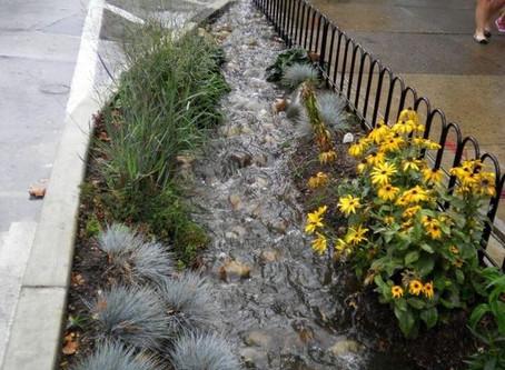 Se deciden a aprovechar agua de lluvia… en Juárez