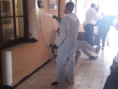 Por asilos de Chihuahua  libres de virus y bacterias
