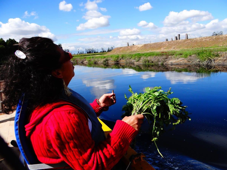Navegación Río Bogotá