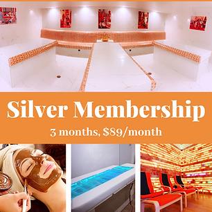Copy of Silver Membership.png