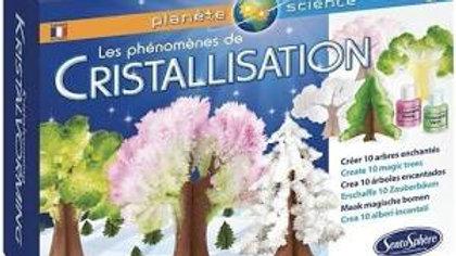 Phénomène de Cristallisation Sentosphère