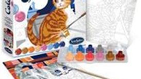 Colorizzy Chats Sentosphère
