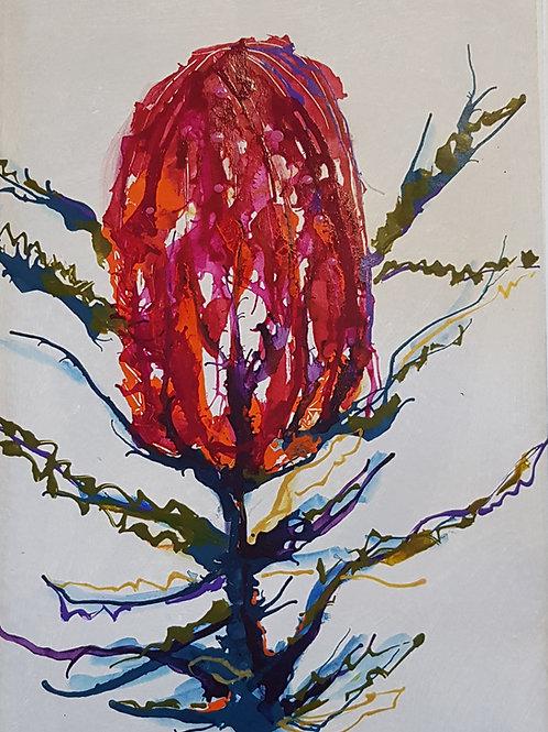 Banksia #2