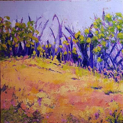 Road to Uluru #2