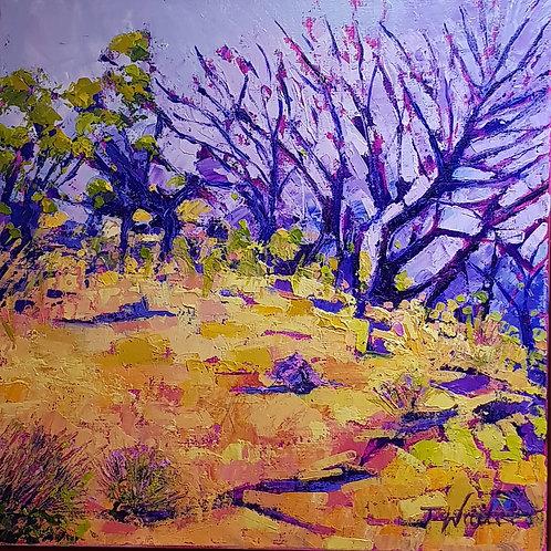 Road to Uluru #1