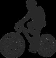 bici BN.png