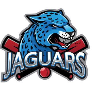 Jaguars Sports Team Logo