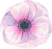 flower 2_3x.png