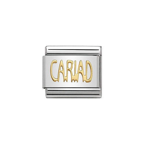 Nomination Gold Cariad Writing Charm Link - 030107/20