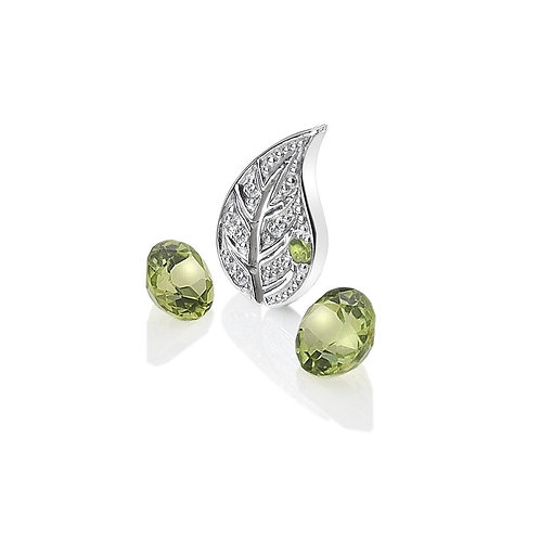 Anais by Hot Diamonds Sterling Silver Earth Charm - AC100