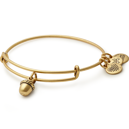 Alex and Ani Rafaelian Gold 'Unexpected Blessings' Charm Bangle - A17EBUBRG