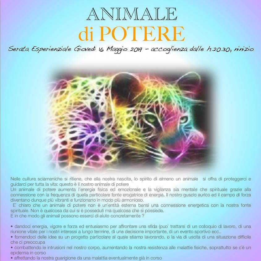 ANIMALE DI POTERE - con Nirava