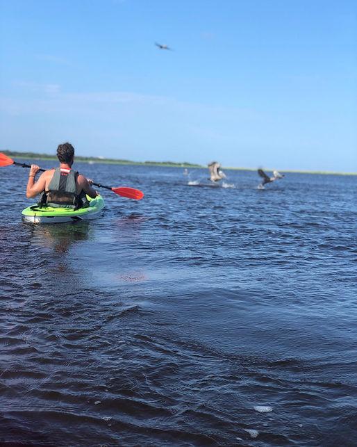 kayak cape fear.jpg
