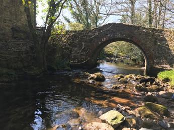 Wisdom Bridge.JPG