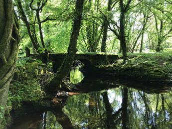 Storridge Wood Bridge.JPG