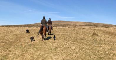 Horse riding penn beacon.jpeg