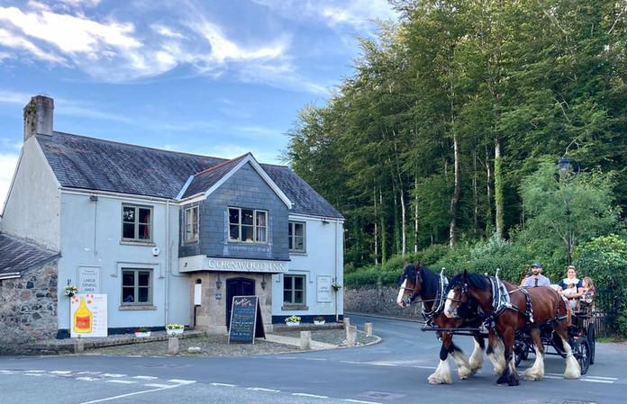 horses and pub.jpg