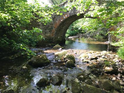 Wisdom Bridge (2).JPG