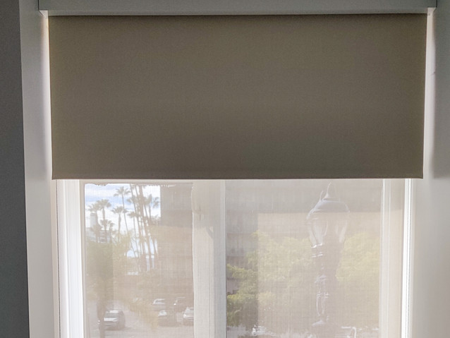 Double Roller Shade Screen & Blackout
