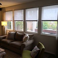 Living Room Shade.jpg