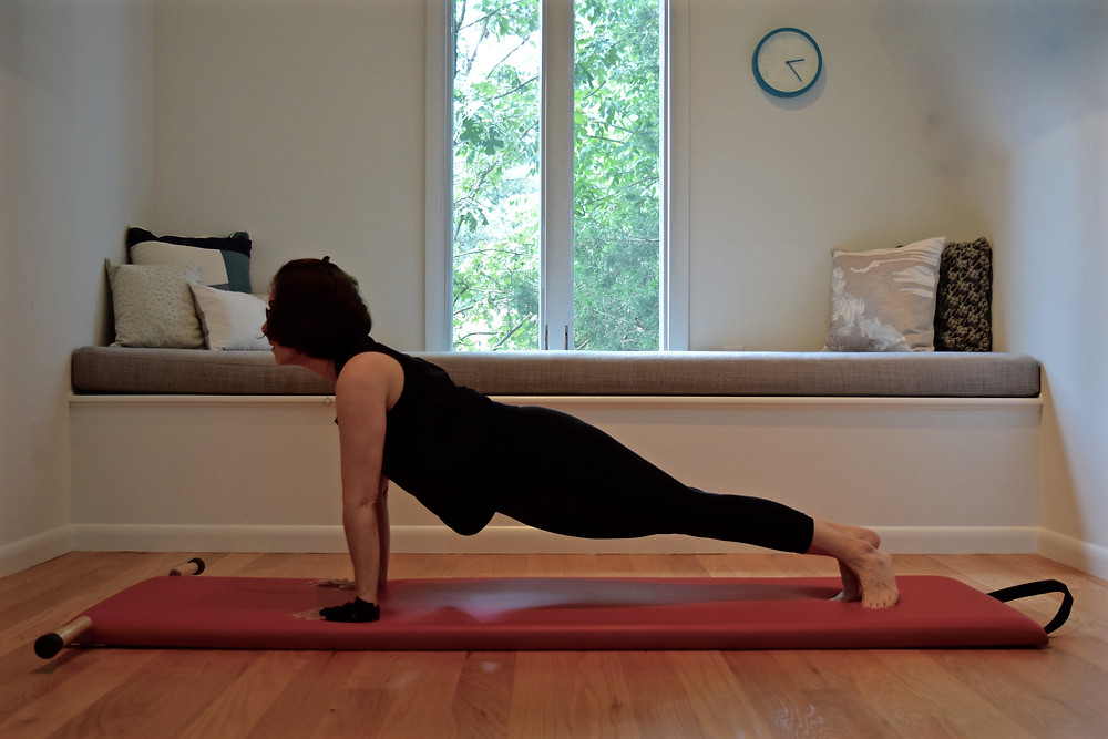 Pilates Snake on the Mat Using WAGS Glove