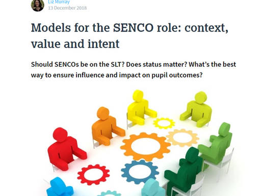 Models for the SENCO role: context, value and intent.