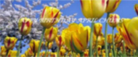 April Pic.JPG