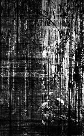 © Maria de Oliveira [desintegration]